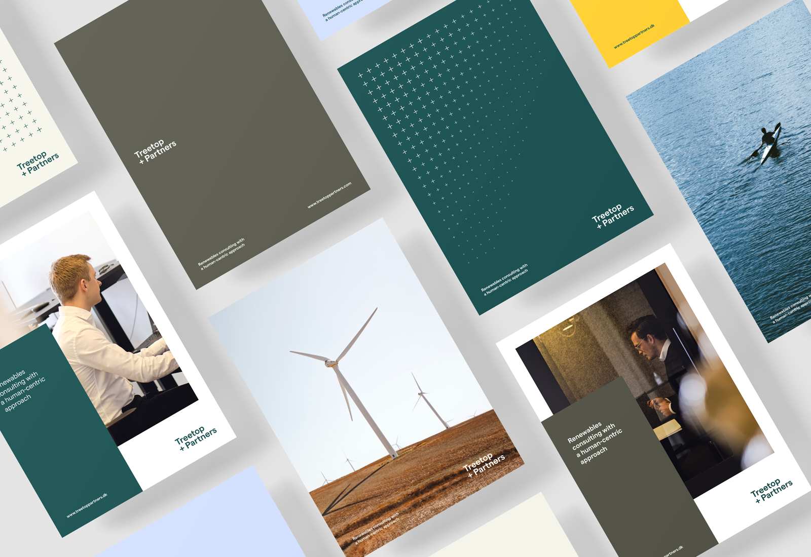 Treetop Partners updates its visual identity to align with its values